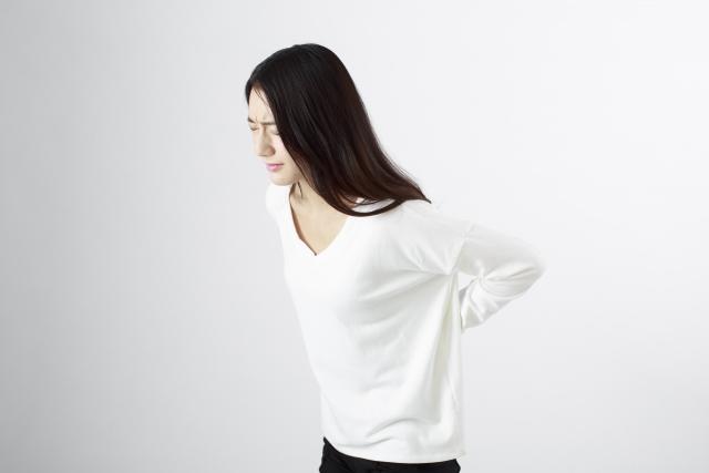 神奈川県の女性整体スクール腰痛講義